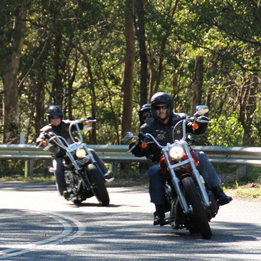 One Hour Harley Ride in Brisbane