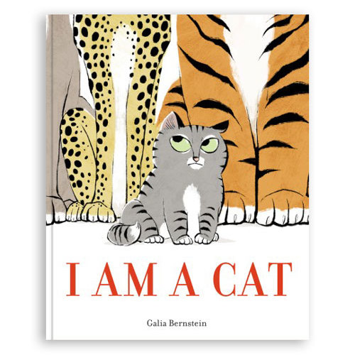 I Am A Cat Storybook